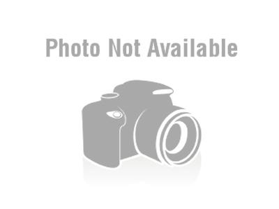 MYBAT Zebra Skin Phone Case for Alcatel One Touch 871A
